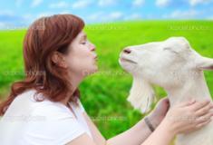 Canadá legaliza relação entre humanos e animais