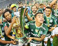 A campanha do campeonato do Palmeiras!