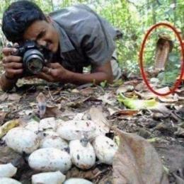 A singular vida de fotógrafo
