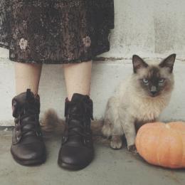Bem vindo, outubro!