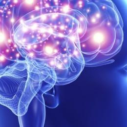 Qual porcentagem do cérebro usamos?