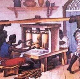 Você sabe como foi inventada a cachaça no Brasil colônia?