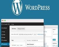 Aprenda a criar um site profissional Wordpress passo a passo