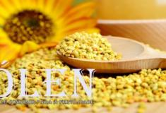 4 Benefícios de consumir pólen para a fertilidade surpreendentes