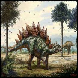 O mais completo fóssil de um Stegosaurus