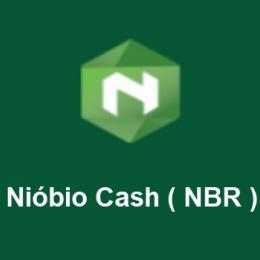 Conheça a criptomoeda brasileira Nióbio Cash ( NBR )