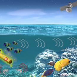 O exército dos EUA quer transformar espécies marinhas em espiões