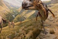 Aves do terror