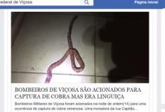 Mulher confunde linguiça com cobra e chama bombeiros