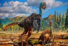 O dinossauro papagaio?