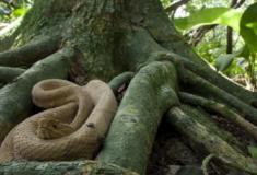 10 lugares mais perigosos do mundo para turistas aventureiros