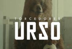 Torcedores ursos que só torcem nos mundiais
