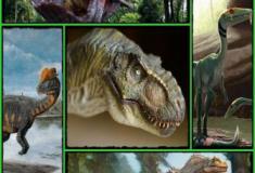 Os dinossauros predadores