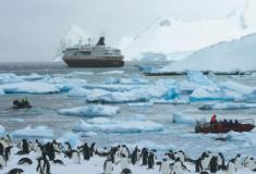 Desembarcando na Antártida, o continente gelado