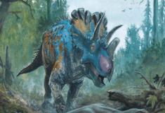 Os parentes do Triceratops