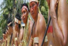Salvando o conhecimento indígena da Amazônia