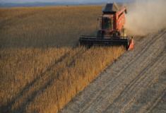 Como é corrigida a acidez dos solos?
