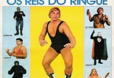 Os Reis do Ringue - Durante os anos 60 alcançou o auge do sucesso, criando vários heróis.