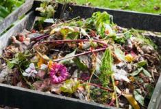 A ciência da compostagem