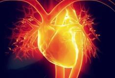 Novas orientações mudam diagnóstico do ataque cardíaco