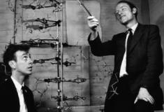 Gênios da ciência: Watson & Crick
