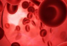 Fatos interessantes sobre o sangue