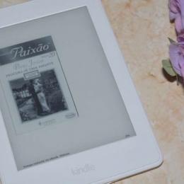 Resenha literária: Procura-se Uma Amante