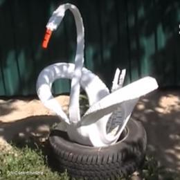 Como fazer um cisne usando um pneu