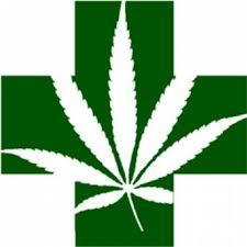 Senado avança em proposta que libera uso medicinal de maconha