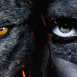 Alfa: a bela amizade entre um lobo e um garoto chega em home vídeo
