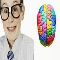 Aprenda como você pode fazer para exercitar seu cérebro