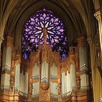 O órgão e o culto - um pouco de provocação