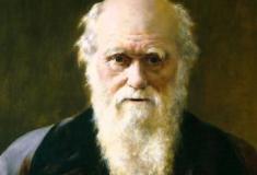 Darwin: o homem que matou Deus