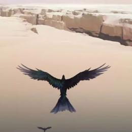 Vane, misterioso jogo de PS4