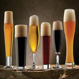 O estudo da cerveja