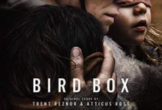 Bird Box, excelente suspense com Sandra Bullock