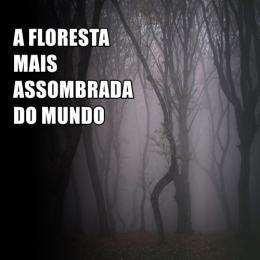 A floresta mais assombrada do mundo
