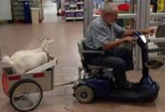 20 tipos de pessoas esquisitas encontradas em supermercados
