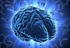 Memória: Como proteger a saúde do Cérebro?