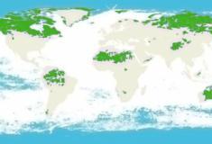 Os 5 países que concentram 70% dos ecossistemas intactos no mundo