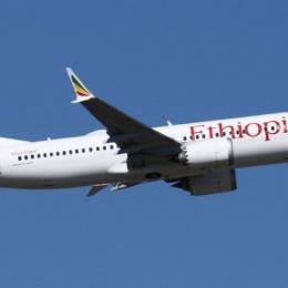 Como é o fatídico avião Boeing 737 MAX 8