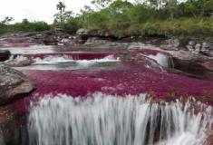 'Arco-íris líquido': o remoto rio da Colômbia descrito como a 8ª maravilha do mundo