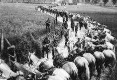 5 curiosidades intrigantes da Primeira Guerra Mundial