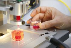 Cientistas imprimem em 3D o primeiro coração humano partir de células de pacientes