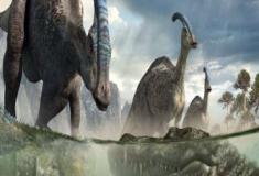 Os estranhos hadrossauros
