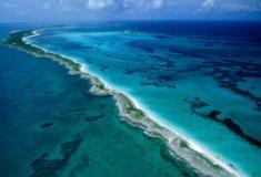 Os oceanos: fonte rica e indispensável de alimentos