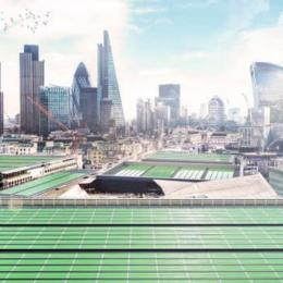 Novo projeto pretende limpar o ar de Londres com algas e plantas microscópicas