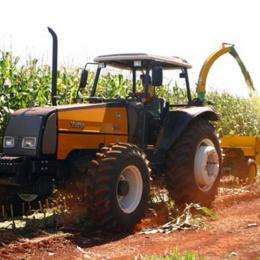 Brasil é o segundo maior exportador mundial de milho