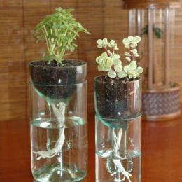 Como fazer lindos vasos com garrafas de vidro