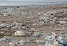 Os plásticos estão asfixiar os oceanos